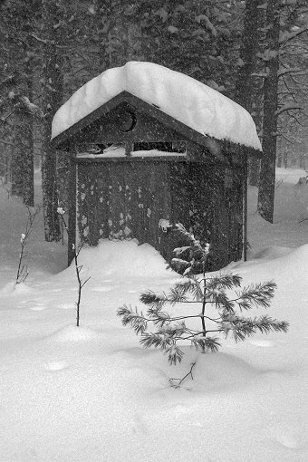 Mystical Outhouse - Alger County - AuTrain, MI